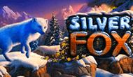 игровой автомат Silver Fox играть бесплатно