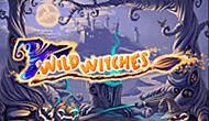 игровые автоматы Wild Witches