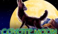 Слот в Шанс Россия Луна Койота