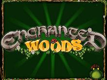 Enchanted Woods от Microgaming – автомат на популярном сайте