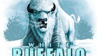Белый Бизон – игровой автомат от создателя софта Microgaming