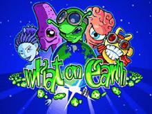 Что Творится На Земле - автомат от производителя игр Microgaming